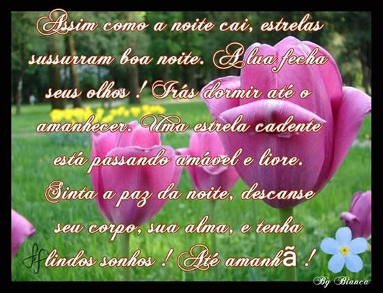 Mensagens De Boa Noite Recados E Mensagens Para Facebook E: Boa Noite Grupo Parado!!!