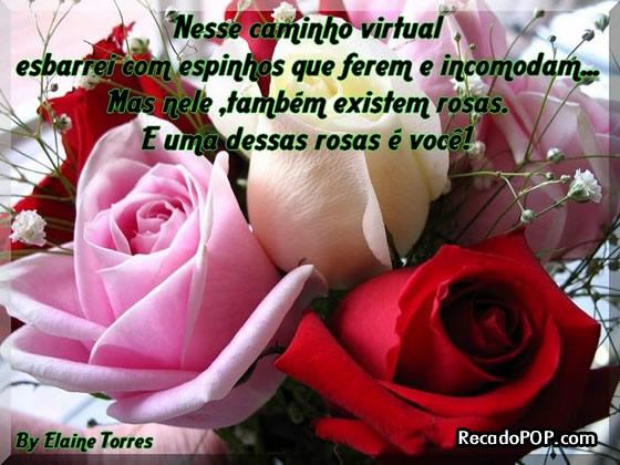 Mensagens De Rosas Para Facebook